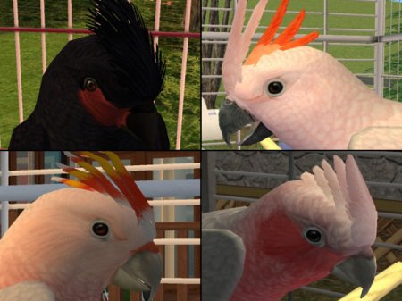 Скины животных для Sims 2: Pets