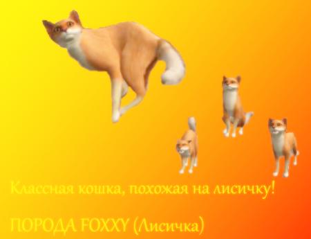 ПОРОДА КОШКИ FOXXY!!! (Sims 2)