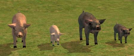 Домашний скот для Sims 2