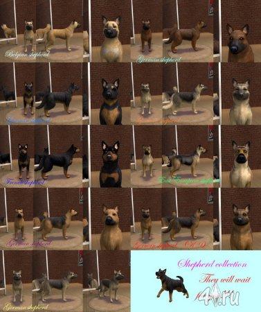 Собака породы Овчарки для Симс 2 в формате sims2pack