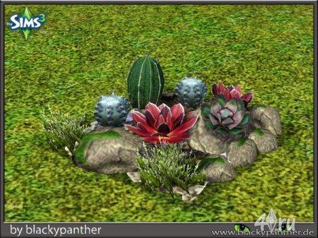 Набор кактусов от blackypanther для Симс 3 в формате sims3pack