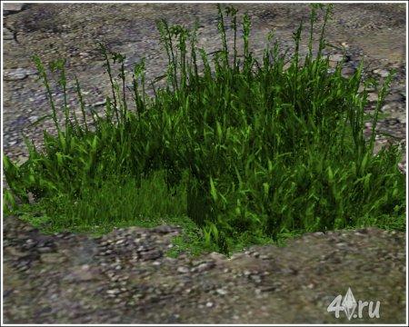 Трава от club-crimsyn для Симс 3