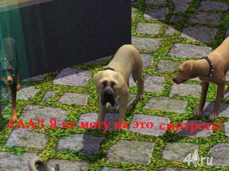 """Скриншоты на тему """"Игровые казусы"""" из игры Симс 3"""