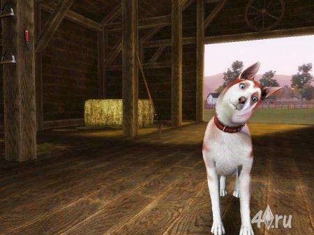 """Собака хаски """"Рыжик"""" от Кота для Симс 3 в формате sims3pack"""