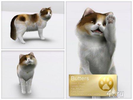 Персидский кот для Симс 3 от LuckyFortune в формате sims3pack